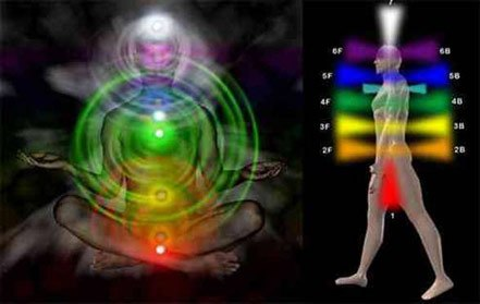 Los órganos de percepción del cuerpo astral se llaman en ocultismo las flores del loto (ruedas sagradas, chacras)