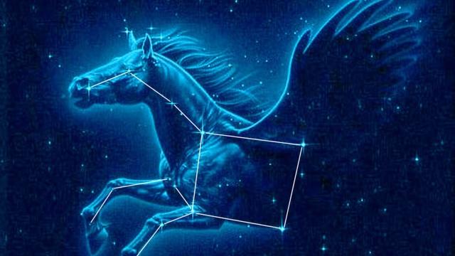 pegaso-constelacion