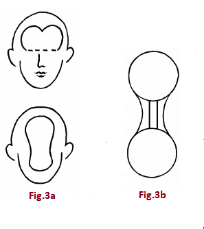 f3ayb