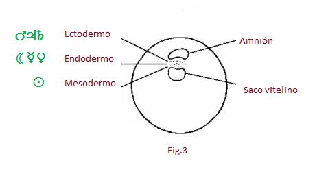 f3sabiduria